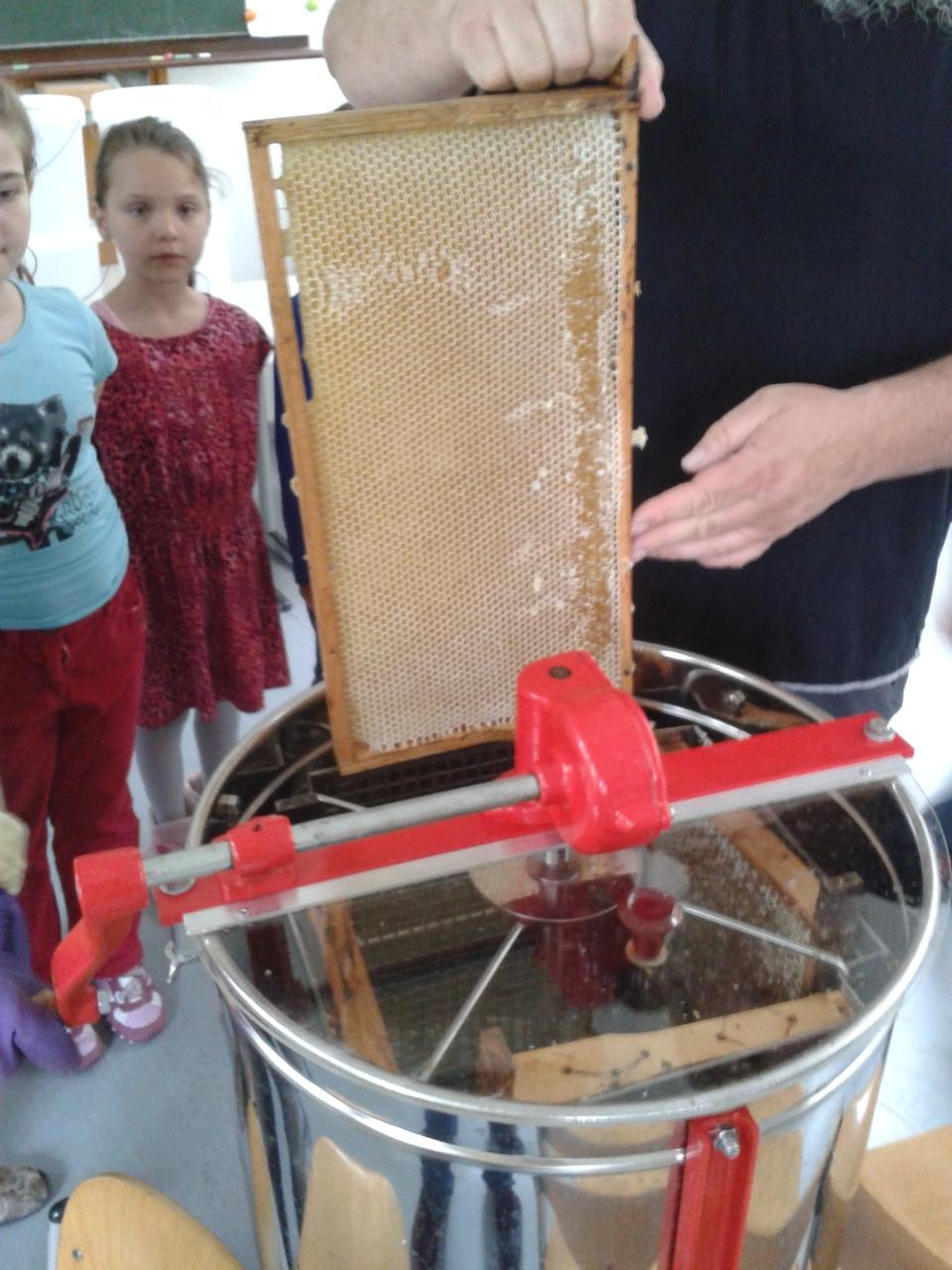 Die Honigwaben kommen in die Schleuder