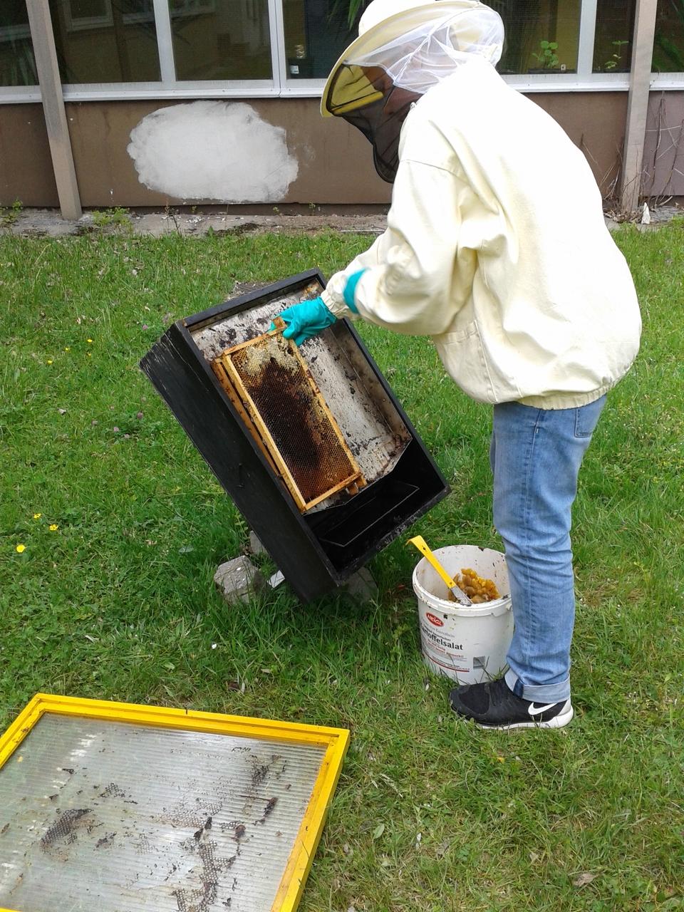 Manuel bestückt den Bienenwachsschmelzer